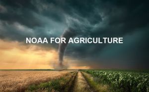 The Important Function And Influence Of NOAA For Agricultural Production doloremque